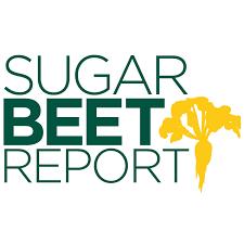 Sugarbeet Report