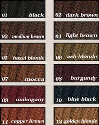 Garnier Hair Dye Colour Chart Hair Color Ideas And Styles