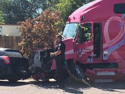 Trucker revived by paramedics after semi strikes parked cars, trees ...