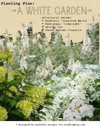 planning a white garden proven winners