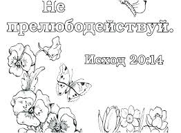 Books Of The Bible Coloring Pages Bible Treasures Coloring Book