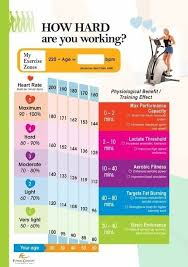 Heart Rate Training Chart Healthy Exercise Health Fitness