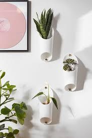 hanging planters hanging plant holder