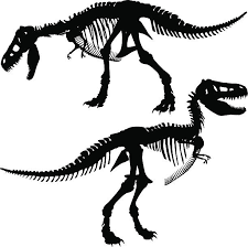 Small Picture T Rex Clip Art Vector Images Illustrations iStock