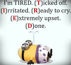 Best Funny Quotes Adorable Best Funny Minions October 48 Quotes 484848 AM Saturday 48
