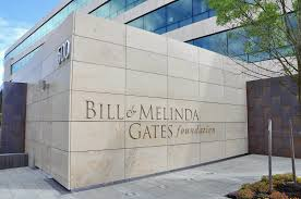 Bill & Melinda Gates Foundation seeks to fund solutions that address  specific challenges | Innovation Village | Technology, Product Reviews,  Business