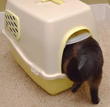 image covered cat litter. NEW Marchioro Bill 1F Covered Cat Litter Box Pan Filter Door YELLOW Kitty Rabbit Image