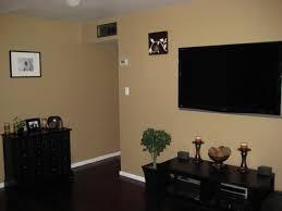 dark wood floors decorating ideas