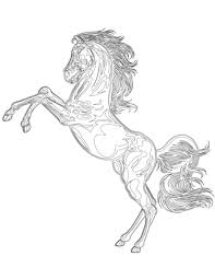 Coloriage Gratuit Cheval Mustang Sauvage Animaux And Adult Coloring