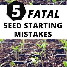 Flower Seed Germination Time Chart 5 Fatal Mistakes For Germinating Seeds You Should Grow