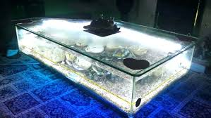 aquarium coffee table fish tank in winsome diy