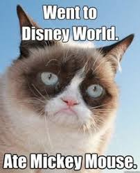 grumpy cat quotes frozen. Brilliant Cat Grumpy Cat Quotes Frozen  Google Search Childhood Ruined Grumpy Cat Quotes  Disney To Quotes Frozen