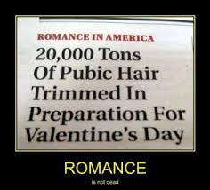 Funny Hate Valentines Day Quotes