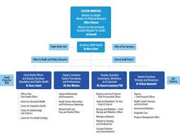 Abf Org Chart Our Organisation Chart Ministry Of Health Governance