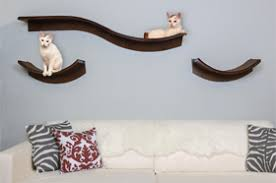 fancy pet furniture. Lotus Cat Shelves Fancy Pet Furniture E