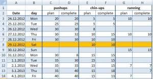 Free Training Diary 2013 Excel Example Com