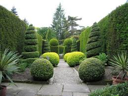 Japanese Garden Plants Japanese Herb Garden Ideas Pinterest Home Design Ideas