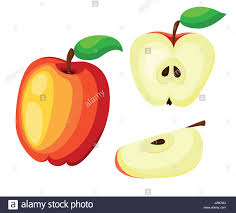 red apple slice. red apples with green leaves and apple slice vector illustration. flat r