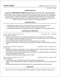 Functional Resume Vs Chronological Ceciliaekici Com
