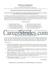 Information Technology Resume Sample Resume Health Information ...