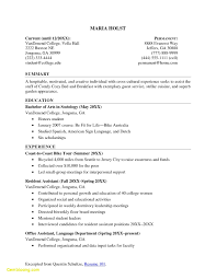Resume Example For College Students Resume Template