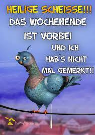 Spruch Wochenende Lustig Kostenlos Downloaden Gb Pics Jappy