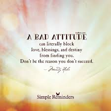 Bad Attitude Quotes Interesting 48 Amazing Negative Attitude Quote Awesome Bad Attitude Sayings