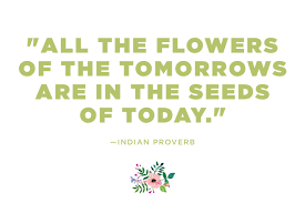 Qoutes About Flowers Flower Quotes 24 Calming Thoughts on Flowers Reader's Digest 22 187