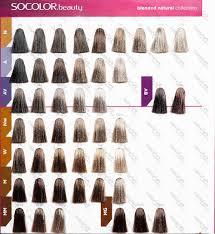 Matrix Hair Color Shades Chart Bedowntowndaytona Com