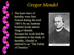 powerpoint biography powerpoint presentation gregor mendel