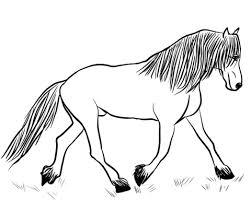 Fries Paard Kleurplaat Gratis Kleurplaten Printen