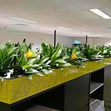 office planter boxes. JJ Richards HO Office Planter Boxes