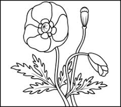 All the flowers coloring pages here is printable. Flowers Coloring Pages