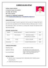 10 Curriculum Vitae Format Download Nycasc