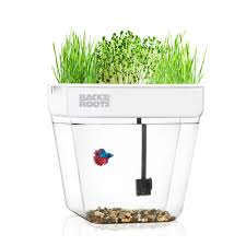 back to the roots premium acrylic water garden fish tank that grows food