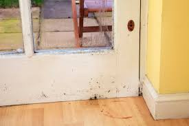 how to remove mold from wood a j