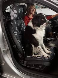 playing with your pet at the beach or running in the snow keep your seats dry and free of dirt with a pet seat cover for bucket or bench seats from