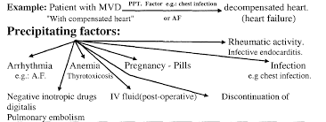 Precipitating Factors Heart Failure Definition Causes Compensatory And