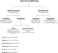 Operant Conditioning Chart Operant Conditioning Social