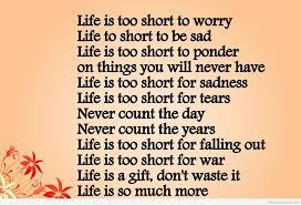 Life Is Precious Quotes Classy Download Life Is Precious Quotes Ryancowan Quotes