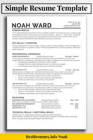 Resume Template Noah Ward Blogger Hangout One Page Resume
