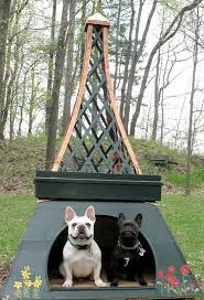 Creative Dog Houses Best 25 In The Dog House Ideas On Pinterest Large Dog House