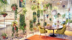 office greenery. Adding A Few Plants To An Office Has Been Shown Make Employees More Productive. Despite This, Many Australian Offices Remain Flora-free. Greenery O