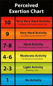 Perceived Exertion Heart Rate Chart How To Gauge My Performance Power Heart Rate Speed