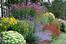 Small Picture Delighful Perennial Flower Garden Ideas Pictures Design Hillside