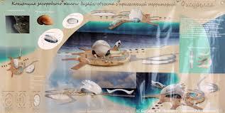 Работы представленные на выставке Сочи гостеприимный город   aso 5556