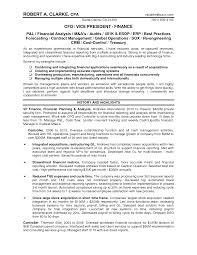 Cfo Resume Financial Executive Cfo Resume Chief Financial Officer Cover 42