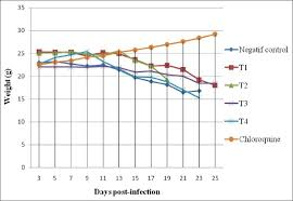 weight group graph of body weight of mice in a different group of treatment