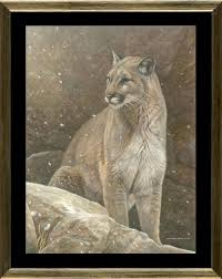 order your limited edition of this canvas giclée limited edition print of this cougar painting titled