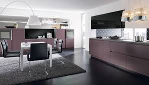 Custom Kitchen Cabinets Miami Decor High Passion For Building Good Home Decoration With Alno